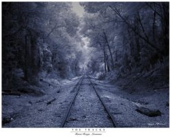 The Tracks by ModernConcept