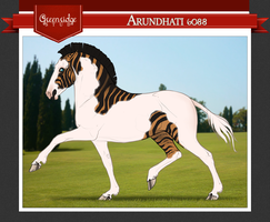 Arundhati 6088 by beauclaire