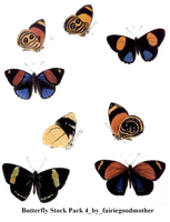 Butterfly Stock Pack 4 by FairieGoodMother