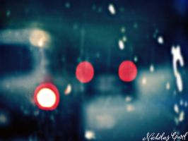 Lights in the Rain by Shiin15