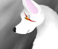 The White Wolf by Shorty-Greydragon