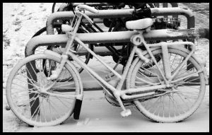 White bike by kijuri