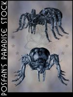Animals 101 Creepy Spiders by poserfan-stock