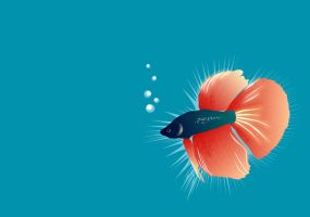 Fishie by effete