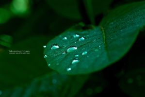 Morning tears by Koljan