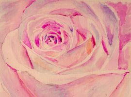 Rose Watercolour by 80sdisco
