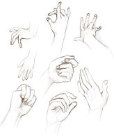 Hand studies by TheScatterbrain