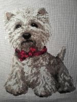 West Highland White Terrier by Aggeloff