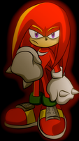 Knuckles The Echidna by xxxwingxxx