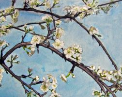 plum blossom by soulxconspiracy