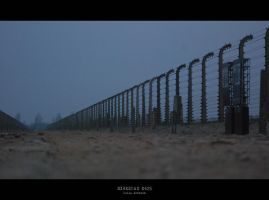 Birkenau 0425 by JuliaKretsch