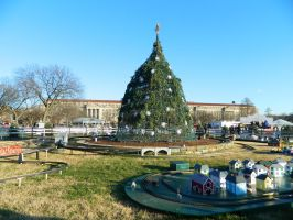 President park: National Christmas tree. by Puppy-41