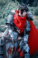 Warrior Hawke cosplay by luiren