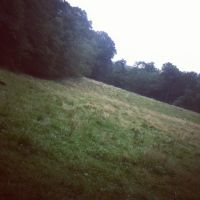 Crookyed Field by LunaPicture