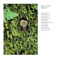 Moss-Hole Bound   -by Cornish Poet Clive Blake by CliveBlake