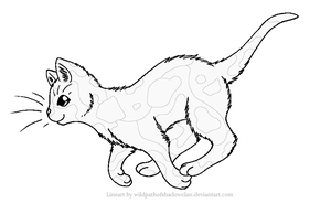 WindClan Tortie Lineart 2 by WildpathOfShadowClan