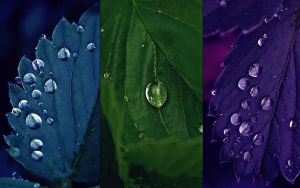 Droplets by Mijagiphotography