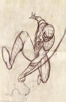 Coming soon Amazing spiderman by gidge1201