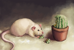 Rats are still eating cactus by Rezuri88