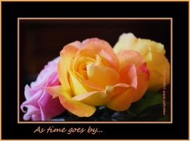 As time goes by... by LadyAliceofOz