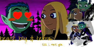 terra and beast boy by ashycat