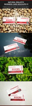 Natural Realistic Business Card Mockup V1 by madebygb