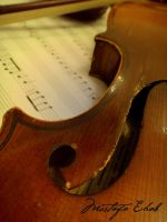 the art of violin 1 by M-Ehab