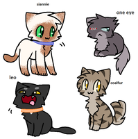 Warrior Cats by usagiemiller