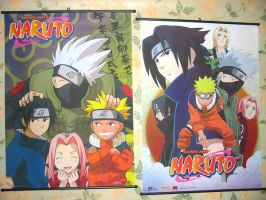 My Naruto Collection PT 2 by Rika24