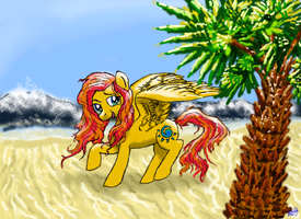 Summer Skies at the Beach by Pwnyville