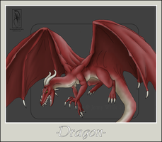 Mythical Creatures-Dragon by BlueEyesBlackTears