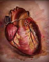 The Heart by TamiTw