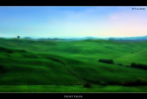 Velvet Fields by Marcello-Paoli
