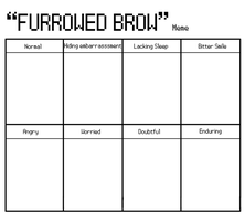 """Furrowed Brow"" Meme by Tamara-tan"