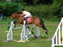 3ft3 Double 2nd Part Oxer Unaffliated Show Jumping by StarCrossedPsycho