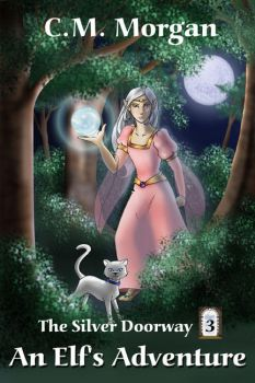The Silver Doorway Book 3 by crzydemona