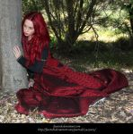 Rose Red 3 by faestock