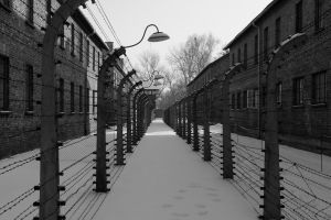 auschwitz2 by smallone1989