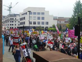 Anti Austerity Marchers by Party9999999