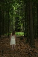 Maiden in the wood serie 1 by velourya-stock