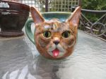 Lil Bub Mug by aviceramics