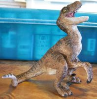 Deinonychus Hatchling, View 2 by she1badelf