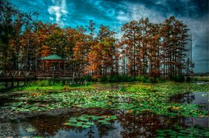 Lake Conway HDR by joelht74