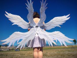 Digimon - Angewomon Wings by ThePinkPoudo