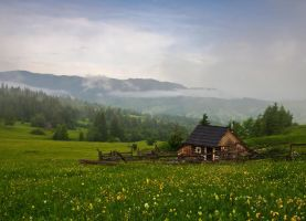 Hut on the hill by lica20
