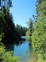 Cowichan River 1 by Misty2007