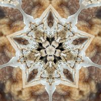 Calcite Mandala 2 by ktraynor