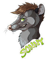 sonny by SleepingDhole