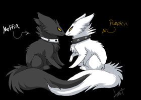 Muffin and Pumpkin by Lost-Mutt