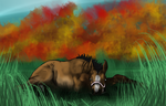 Your Foal Here by Hidden-Hollow-Ranch
